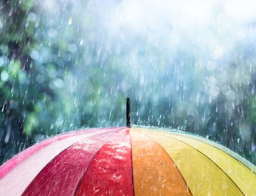 מטריה וגשם